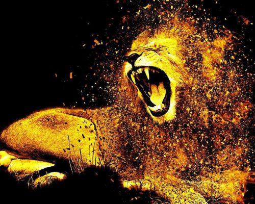 kako osvojiti leva