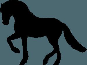 Kitajski horoskop - Konj
