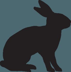 kitajski horoskop - zajec