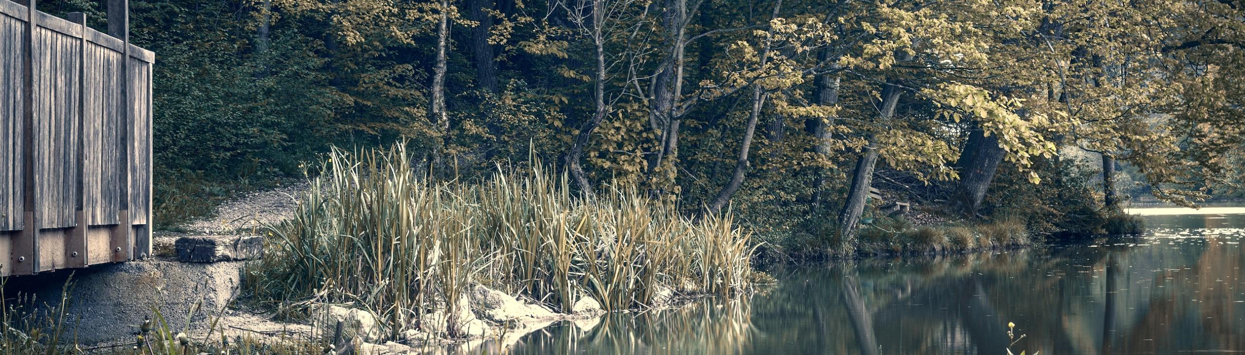 braslovsko jezero