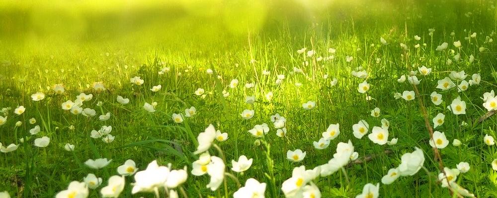 poletni-solsticij-enakonocje