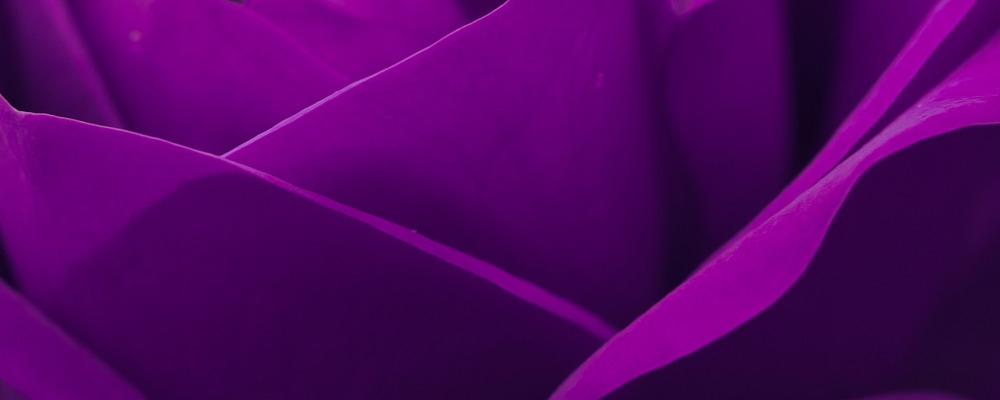 barva-za-horoskopski-znak-strelec-portal8-si