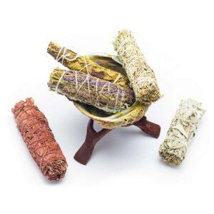 abalone-skoljka-kadila-portal8